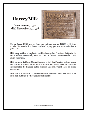 Harvey Milk Hero Biography