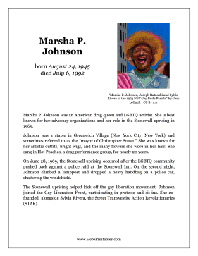 Marsha P Johnson Hero Biography